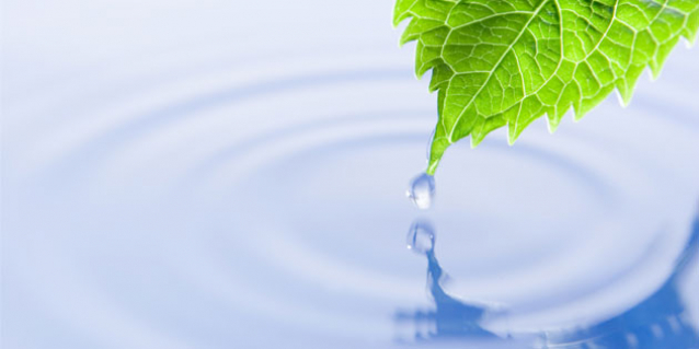 Water/Wastewater Industries - leaf with water drop