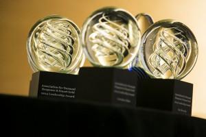 Smart Grid Leadership Award